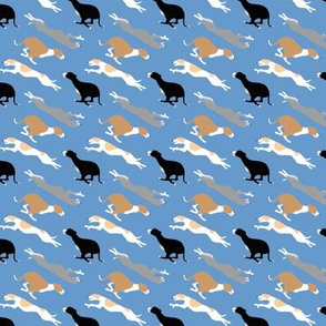 Dashing Whippets small repeat - blue