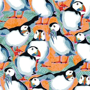 Atlantic Puffins / Large scale