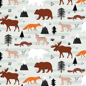 Canadian fauna