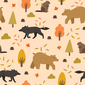 Bears, foxes and beavers in Canadian forest