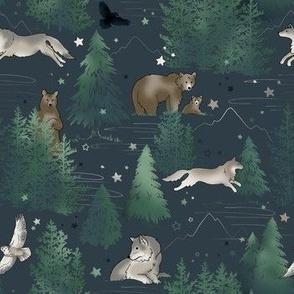 Bears & Wolves