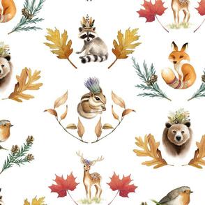 Flora & Fauna - Canadian Wildlife