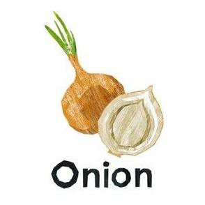 "Onion - 6"" Panel"