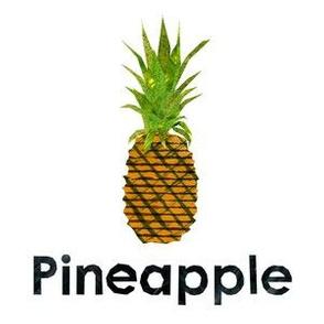"Pineapple - 6"" Panel"