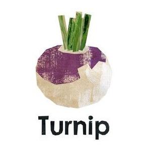 "Turnip - 6"" Panel"