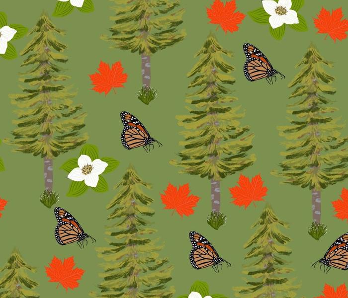 Canada wildlife Butterflies Maple Leaves Pine Tree Bunchberry flowers