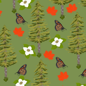 Canada wildlife Butterflies Maple Leaves Pine Tree Bunchberry flowers