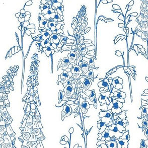 Blue & White May Flowers