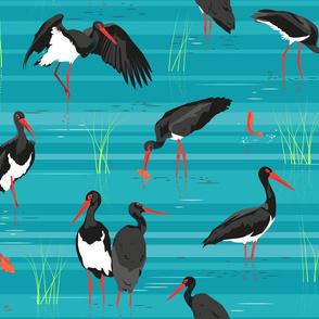 black stork, gold fish