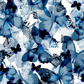 Butterfly Blue - small