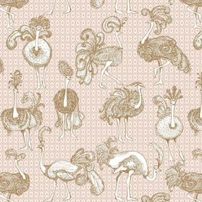 Medium Fancy Ostriches
