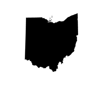 "18"" Ohio silhouette - black and white panels"