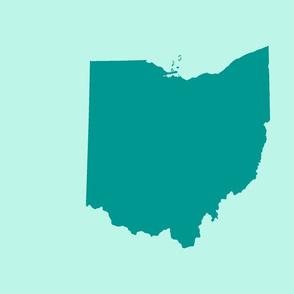 "18"" Ohio silhouette -  teal on aqua"