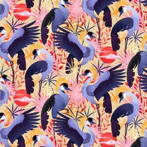crowned crane savanna