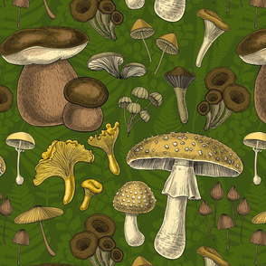 Wild mushrooms on green background with silhouettes of ferns