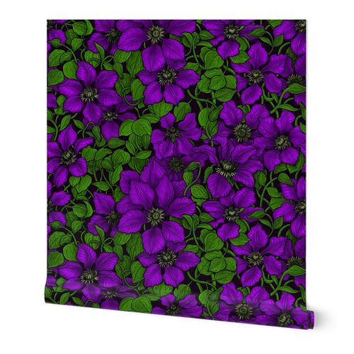 Purple Clematis vine