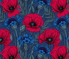 Red poppies and blue cornflowers on blue