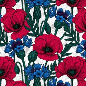 Red poppies and blue cornflowers on white