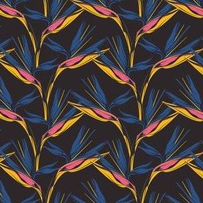 Bird of Paradise - Midnight, mini