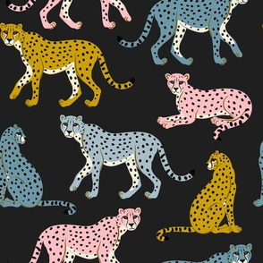 Pastel Cheetahs on Black by Heather Anderson