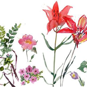 provincial flower border
