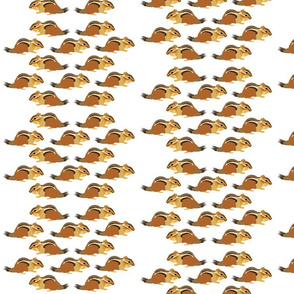 Chipmunk White-Brown