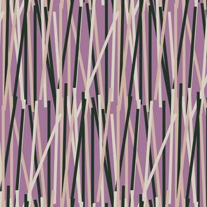 Crazy stripes-PURPLE