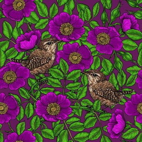 Wrens in the roses in purple, green and glitter