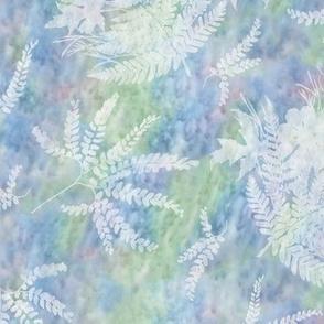Medium Maidenhair Maple and Fern Sunprints on Blues Green Pink