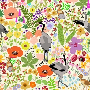 A springtime crane dance
