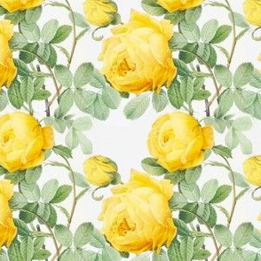 Yellow vintage roses print