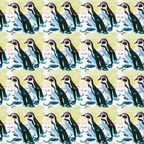 Chilean penguin parade