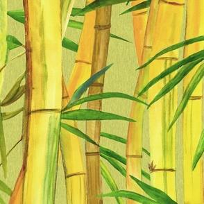 Hawaiian Bamboo Forest 2