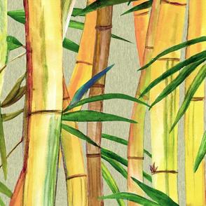 Hawaiian Bamboo Forest