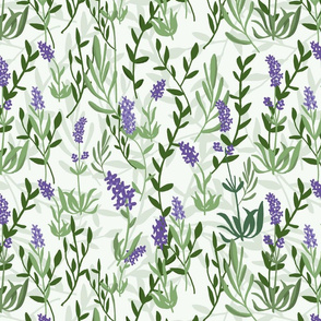 Lavender Fields-Cream