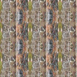 Juniper Bark by DulciArt,LLC