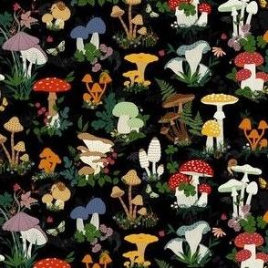 Mushroom garden scale down