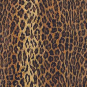 Jaguar Panel 2