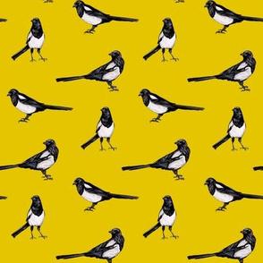 Magpies on Yellow - Bird Pattern