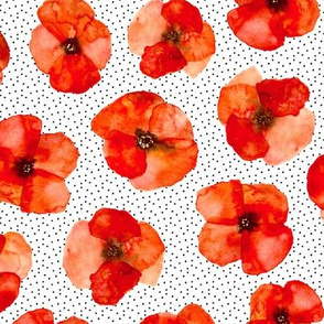 Californian poppy meadow with lots of dots - watercolor poppies florals