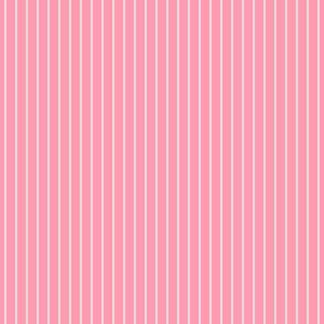 SPAGHETTI STRIPES white on pink