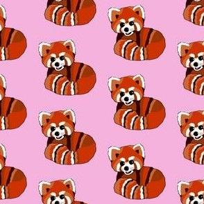 Red panda print on pink