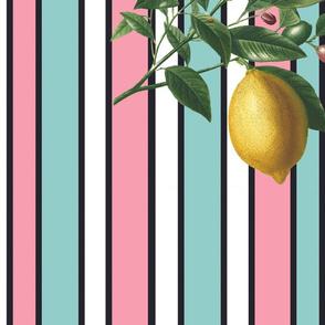 Stripe con Limone