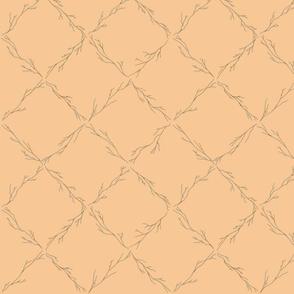 Branch lattice on tequila - medium