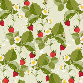 Strawberries on PALE GREEN