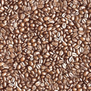 Coffee beans Illustration