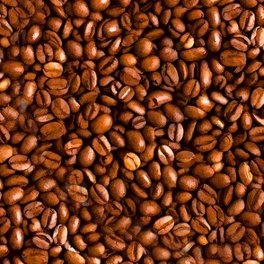 Coffee Beans Oil Painted