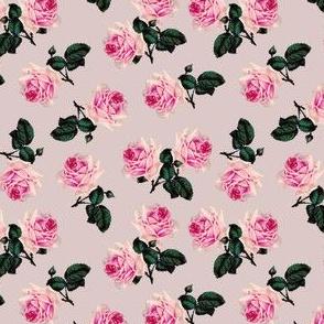 Scattered vintage roses on dusky pink (small)
