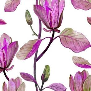 Magnolia Vines Violet