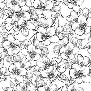 seamless pattern with sakura BW-01